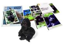 Mountain Gorilla Gift Pack
