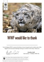 Adopt a Snowy Animal Certificate