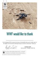 Adopt a Turtle Certificate