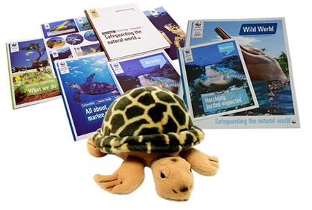 Adopt a Turtle Gift Pack