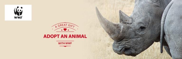 Adopt a Rhino