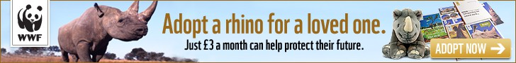 Adopt a Rhino with WWF